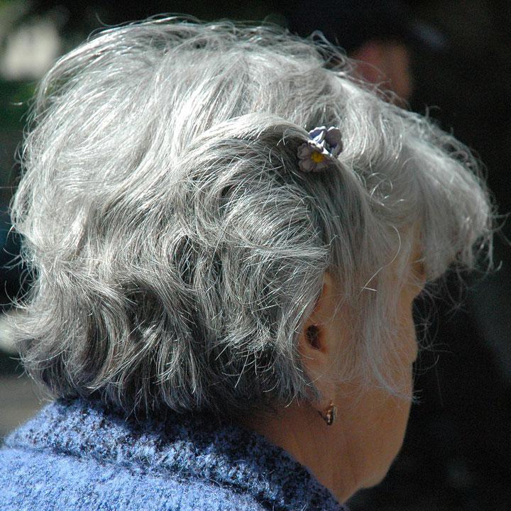 高齢者の世話をする介護職